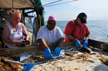 Scientists work with local fishermen